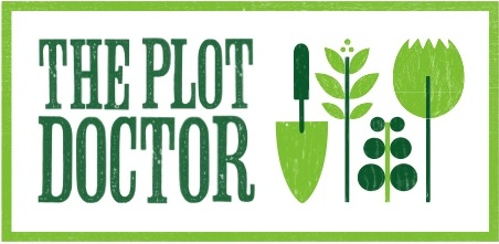 the Plot Doctor, North London gardens